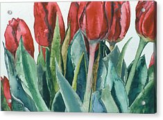 Mini-valentine Tulips - 2 Acrylic Print by Caron Sloan Zuger