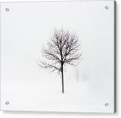 Minimum Visibility Acrylic Print