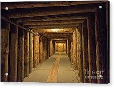 Mining Tunnel Acrylic Print by Juli Scalzi