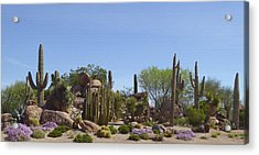 Acrylic Print featuring the photograph Mirabel by Gordon Beck
