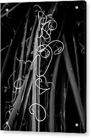 Miro In The Desert Acrylic Print