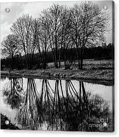 Mirroir Acrylic Print