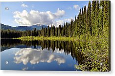 Acrylic Print featuring the photograph Mirror Image by Blair Wainman