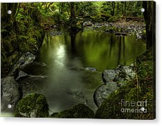 Mirror Pool Acrylic Print