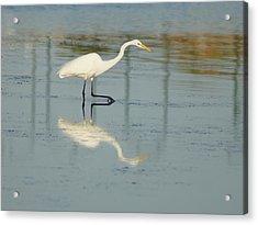 Mirror Step Acrylic Print by Lynda Dawson-Youngclaus