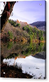 Mirrored Acrylic Print by Emily Stauring
