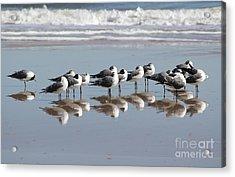 Mirrored Flock Acrylic Print