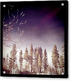 Mirrored On The Lake Acrylic Print