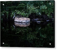Mirrored Acrylic Print by Stan Wojtaszek