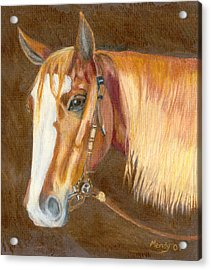 Miss Cow Chex Acrylic Print by Mendy Pedersen