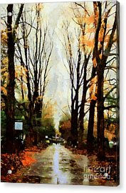 Acrylic Print featuring the photograph Missing You - Rainy Day Park by Janine Riley