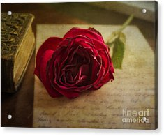 Acrylic Print featuring the mixed media Missing You by Terry Rowe