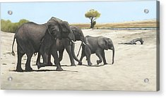 Mission Acrylic Print by Clive Meredith