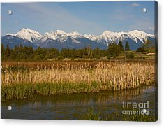 Mission Mountain Glory Acrylic Print