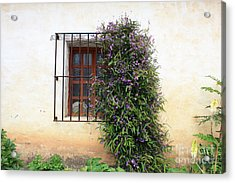 Mission Window With Purple Flowers Acrylic Print by Carol Groenen