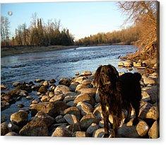 Mississippi River Good Morning Acrylic Print by Kent Lorentzen