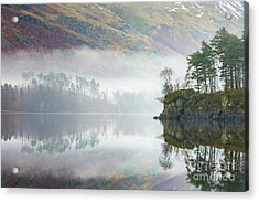 Mist Covered Pines - Thirlmere Acrylic Print