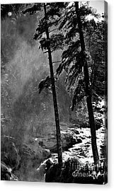 Mist Acrylic Print by Elfriede Fulda
