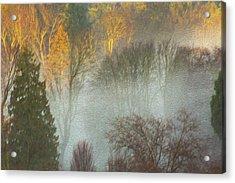 Mist In The Park Acrylic Print