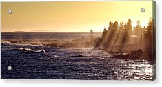 Mist Off The Coast Of Maine Acrylic Print by Olivier Le Queinec