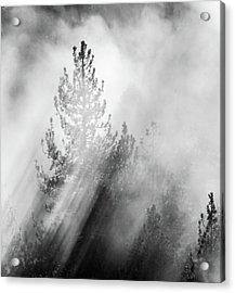 Mist Shadows Acrylic Print
