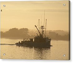 Mister G In The Mist Acrylic Print by Donald Cameron