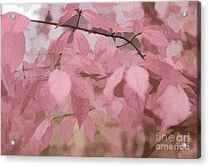 Misty Autumn Leaves Acrylic Print by Judy Palkimas