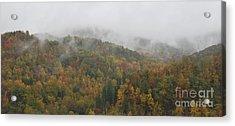 Misty Autumn Acrylic Print