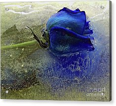 Misty Blue Acrylic Print by Terry Foster