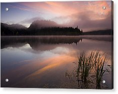 Misty Dawn Acrylic Print by Mike  Dawson