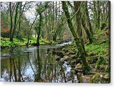 Misty Day On River Teign - P4a16017 Acrylic Print