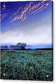 Misty Frost Acrylic Print by Phil Koch