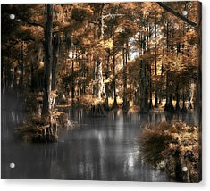 Misty Lake Acrylic Print by Cecil Fuselier