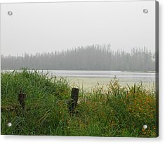 Misty Lake Acrylic Print by Marilyn Smith