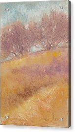Misty Landscape II Acrylic Print by Tracie Thompson