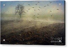 Misty Meadows Acrylic Print