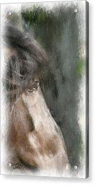 Misty Morn Acrylic Print by Elzire S
