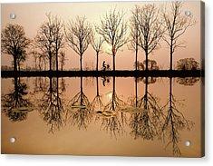 Misty Morning Magic Acrylic Print by Roeselien Raimond