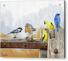 Misty Morning Meadow Acrylic Print