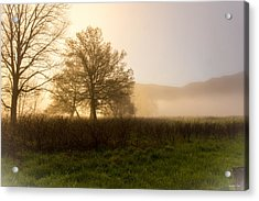 Acrylic Print featuring the photograph Misty Morning by Rebecca Hiatt