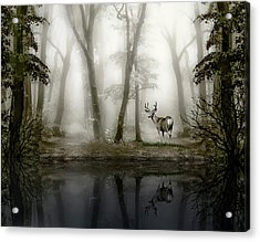 Acrylic Print featuring the photograph Misty Morning Reflections by Diane Schuster