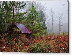 Misty Morning Acrylic Print by Sandi Blood