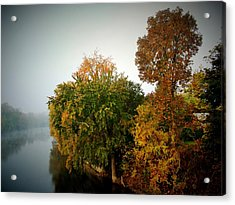 Misty Morning Shoreline Trees Acrylic Print