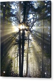 Misty Morning Sunrise Colorful Acrylic Print by Crista Forest
