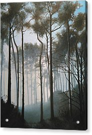 Misty Morning Walk Acrylic Print