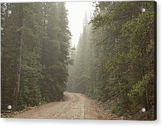 Acrylic Print featuring the photograph Misty Road by James BO Insogna