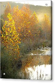 Misty Sunrise At Lost Maples State Park Acrylic Print