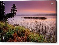 Misty Sunrise Acrylic Print