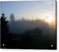 Misty Sunrise Acrylic Print by Shirley Heyn