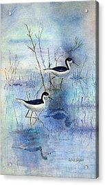 Misty Swamp Acrylic Print